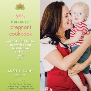 yes-you-can-get-pregnant-cookbook-1