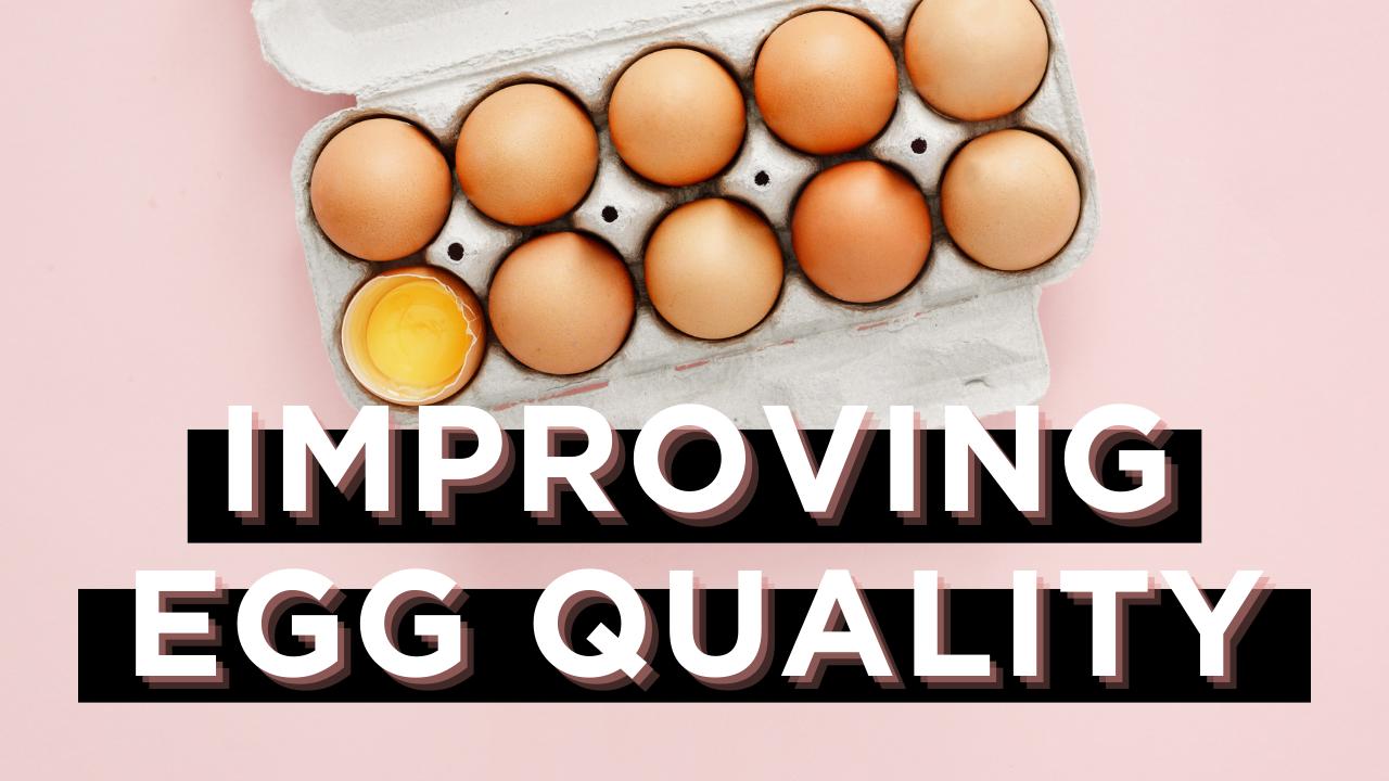Carton of Eggs with one egg broken